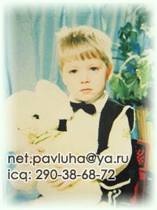 Pavluha.Net - контакты