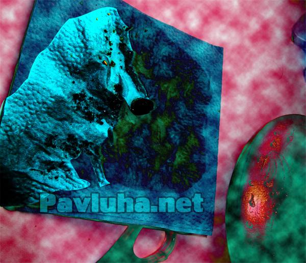 6.Волк в фотошопе